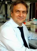 prof. Alessandro Vercelli
