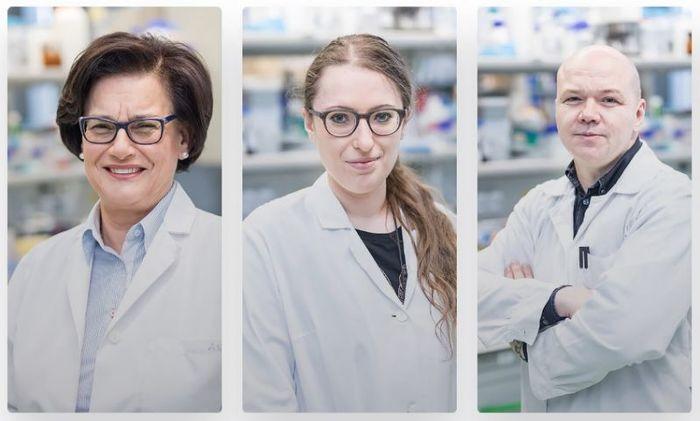 prof. dr hab. Ewa Łojkowska, dr Agata Motyka, dr inż. Wojciech Śledź/źródło: MWB UG i GUMed